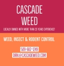 Cascade weed 2