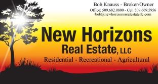 New Horizons Updated Logo